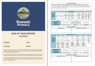 report-for-website-1